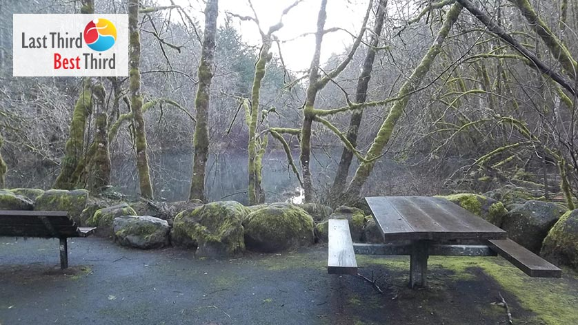 Picnic bench in front of bare trees and a pond in the background