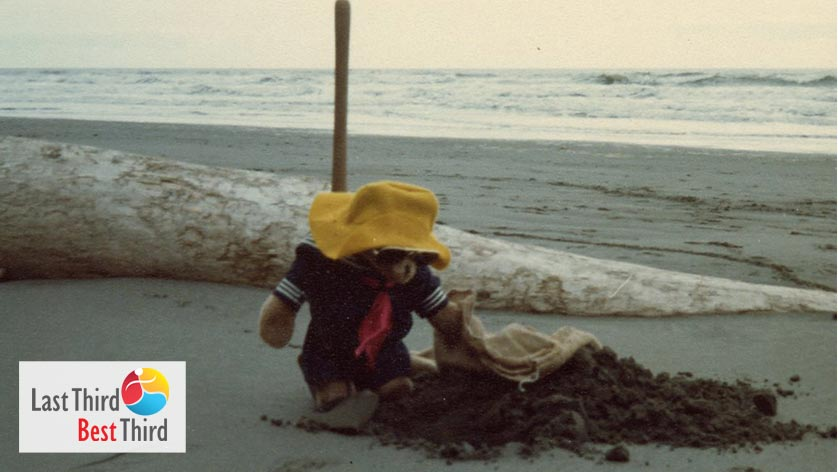 Paddington the bear in sailor outfit on the beach digging for clams with the ocean in the background.