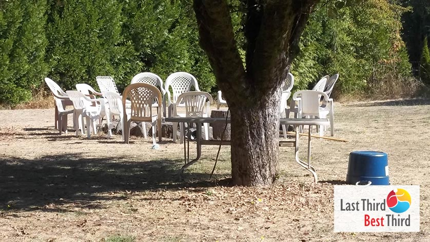 Grouping of outdoor chairs on a grassy lot under a beautiful tree awaiting the party-goers.