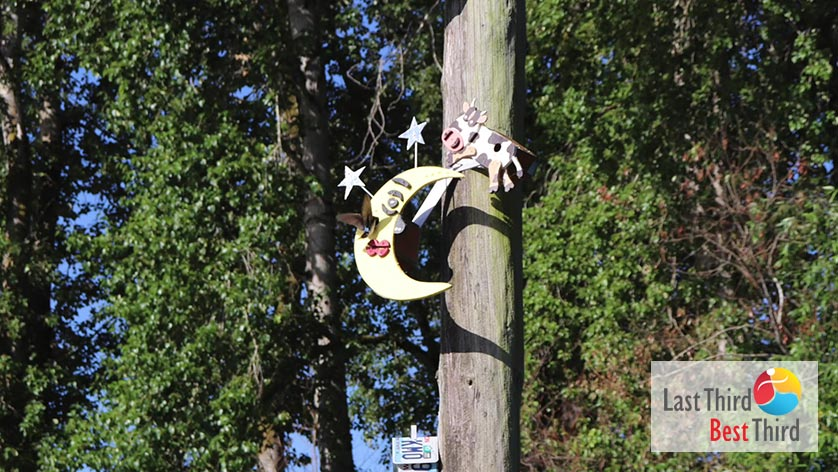 Birdhouses-of-Ridgefield-WA-Cow-and-Moon