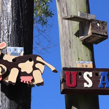 Birdhouses-of-Ridgefield-WA-Cow-and-USA