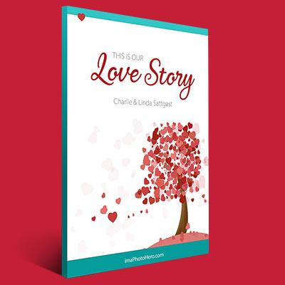 Love Story PDF Download Link