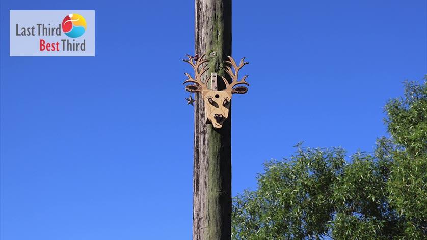 Birdhouses-of-Ridgefield-WA-Deer-Birdhouse