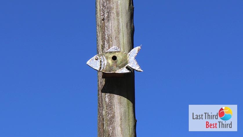 Birdhouses-of-Ridgefield-WA-Fish-Birdhouse