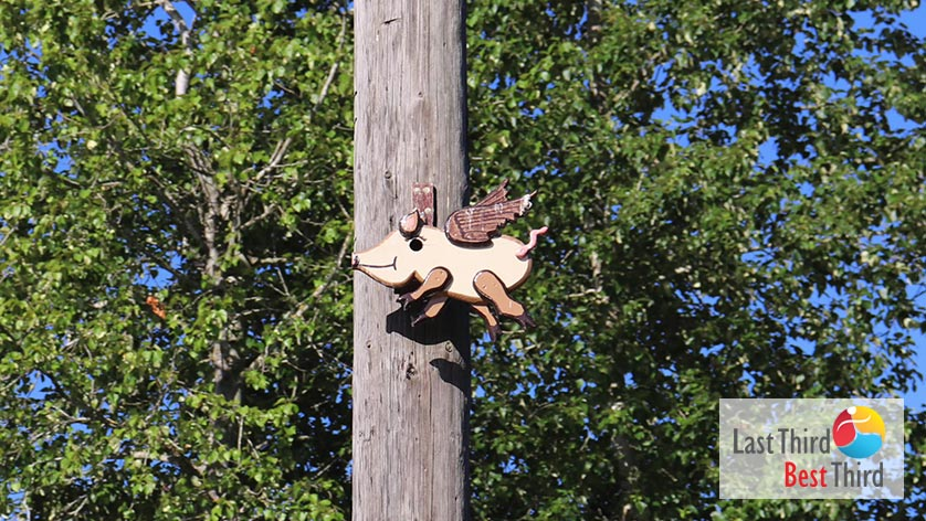 Birdhouses-of-Ridgefield-WA-Flying-Pig