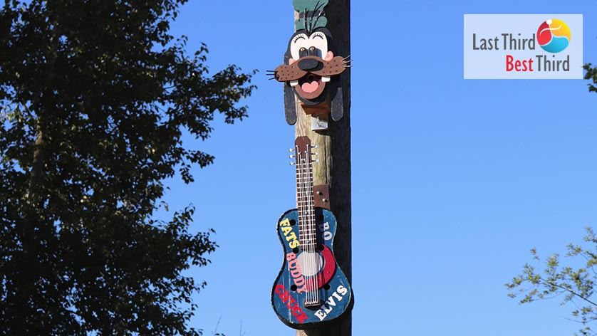 Birdhouses-of-Ridgefield-WA-Goofy-and-Guitar