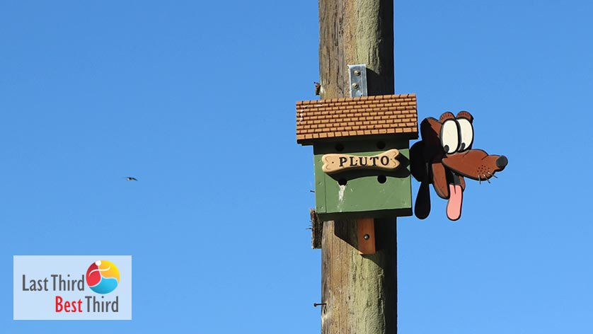 Birdhouses-of-Ridgefield-WA-Pluto-Birdhouse