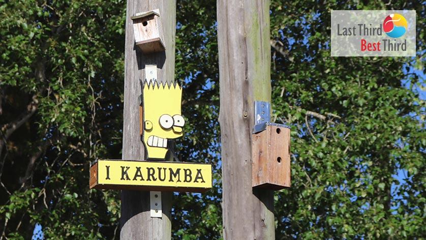 Birdhouses-of-Ridgefield-WA-Simpsons-Birdhouse
