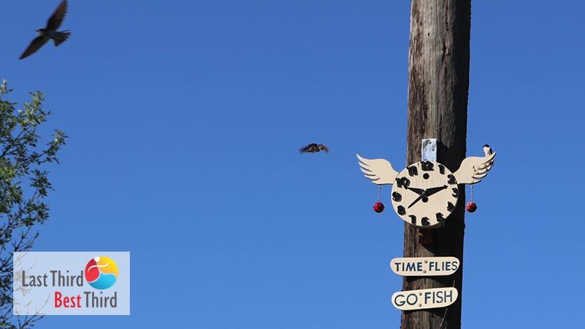 Birdhouses-of-Ridgefield-WA-Time-Flies