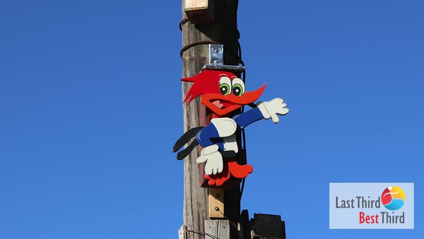Birdhouses-of-Ridgefield-WA-Woody-Woodpecker