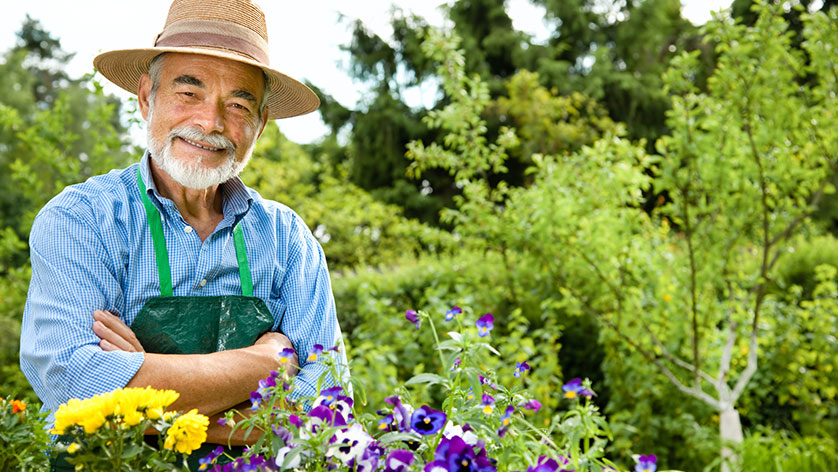 How to Start a Garden in Retirement